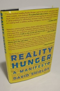 'Reality Hunger' redux