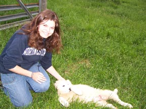 College girl: Claire pets our new sheep guardian puppy.