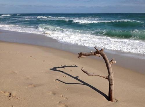 Beach Stick x